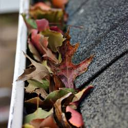 Clogged gutters filled with fall leaves  in Avon